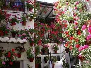 Patios de Córdoba, ** World Heritage Site ** - CasaEnChilches.com