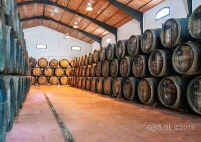 Cortijo Casa Guardia Turismo Rural 10