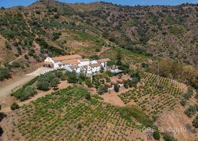 Cortijo Casa Guardia Turismo Rural